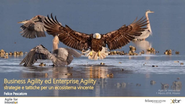 Business Agility ed Enterprise Agility strategie e tattiche per un ecosistema vincente Felice Pescatore Agile for Innovati...