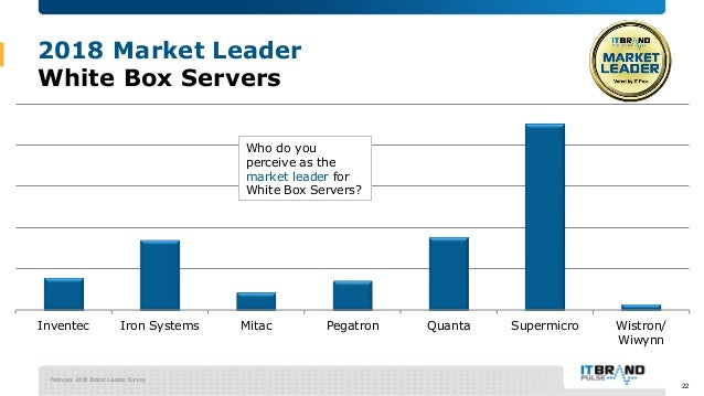 2018 Servers Brand Leader Mini- Report