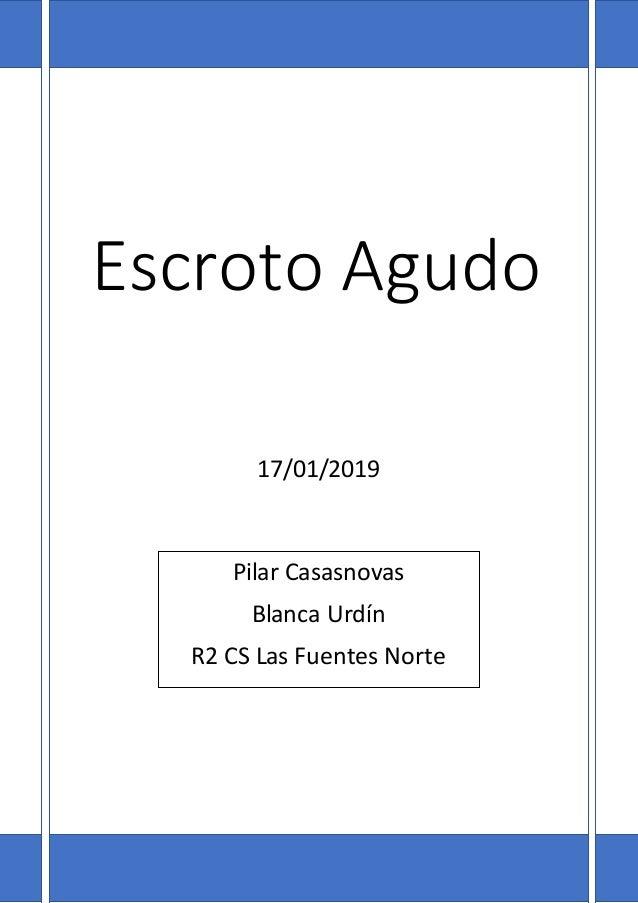 Escroto Agudo 17/01/2019 Pilar Casasnovas Blanca Urdín R2 CS Las Fuentes Norte