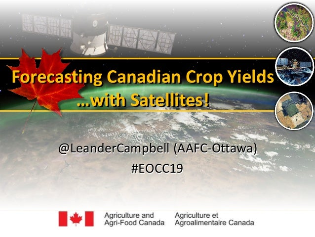 Forecasting Canadian Crop Yields …with Satellites! Forecasting Canadian Crop Yields …with Satellites! @LeanderCampbell (AA...