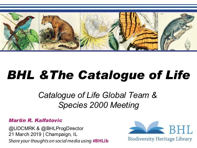 Free & Open Access to Biodiversity Literature Catalogue of Life Global Team & Species 2000 Meeting Martin R. Kalfatovic @U...