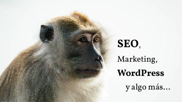 SEO, Marketing, WordPress y algo más...