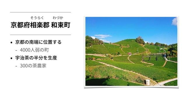 京都府相楽郡 和束町 • 京都の南端に位置する - 4000⼈弱の町 • 宇治茶の半分を⽣産 - 300の茶農家 わづかそうらく