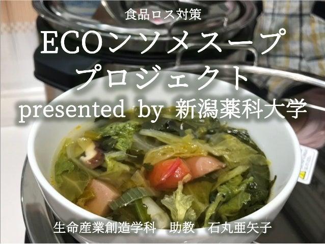新潟県3R推進県民フォーラム事例発表