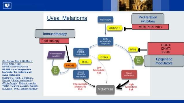 All Rights Reserved, Duke Medicine 2007 Immunotherapy T-cell therapy Proliferation inhibitors MEKi PI3Ki PKCi Epigenetic m...