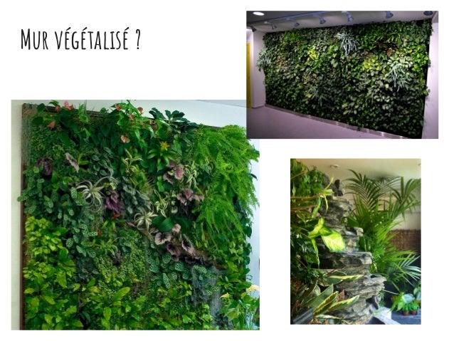 Comment faire un mur végétal chez soi ? Slide 3
