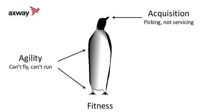 Fitness Agility Can't fly, can't run Acquisition Picking, not servicing