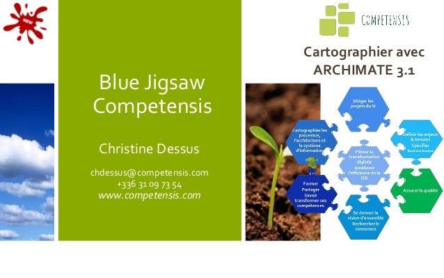 Blue Jigsaw Competensis Christine Dessus chdessus@competensis.com +336 31 09 73 54 www.competensis.com Cartographier avec ...