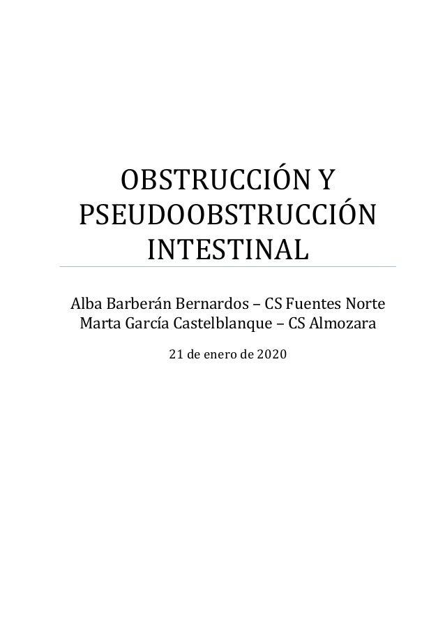 OBSTRUCCIÓN Y PSEUDOOBSTRUCCIÓN INTESTINAL Alba Barberán Bernardos – CS Fuentes Norte Marta García Castelblanque – CS Almo...