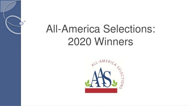 All-America Selections: 2020 Winners