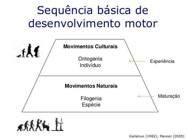 Movimentos Naturais Filogenia Espécie Movimentos Culturais Ontogenia Indivíduo Maturação Experiência Sequência básica de d...