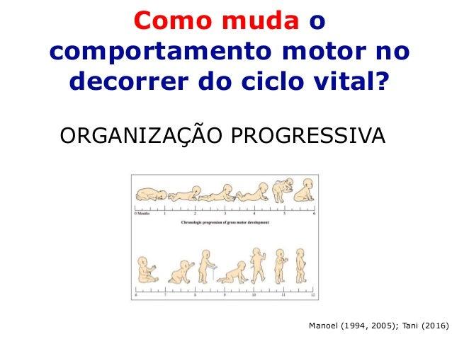 Como muda o comportamento motor no decorrer do ciclo vital? ORGANIZAÇÃO PROGRESSIVA Manoel (1994, 2005); Tani (2016)