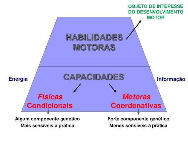 CAPACIDADES HABILIDADES MOTORAS Físicas Condicionais Motoras Coordenativas Algum componente genético Mais sensíveis à prát...