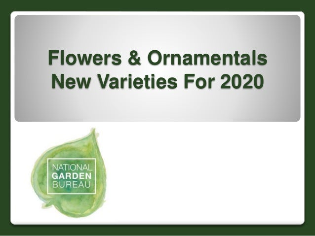 Flowers & Ornamentals New Varieties For 2020
