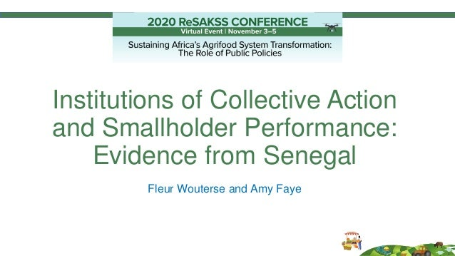 Institutions of Collective Action and Smallholder Performance: Evidence from Senegal Fleur Wouterse and Amy Faye
