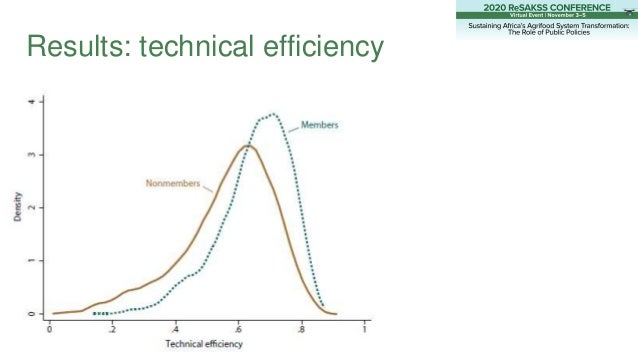 Results: technical efficiency