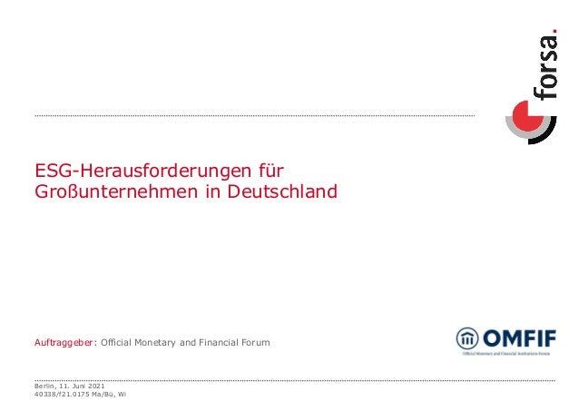ESG-Herausforderungen für Großunternehmen in Deutschland Auftraggeber: Official Monetary and Financial Forum Berlin, 11. J...