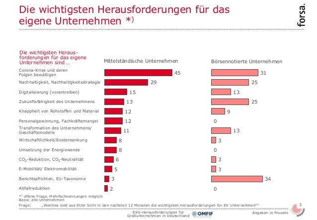 ESG-Herausforderungen für Großunternehmen in Deutschland Slide 3