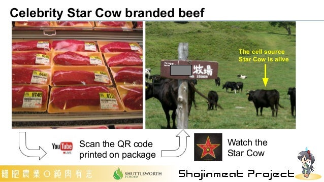 Celebrity Star Cow branded beef The cell source Star Cow is alive Scan the QR code printed on package Watch the Star Cow