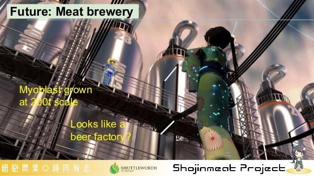 Myoblast grown at 200t scale Looks like a beer factory? Future: Meat brewery