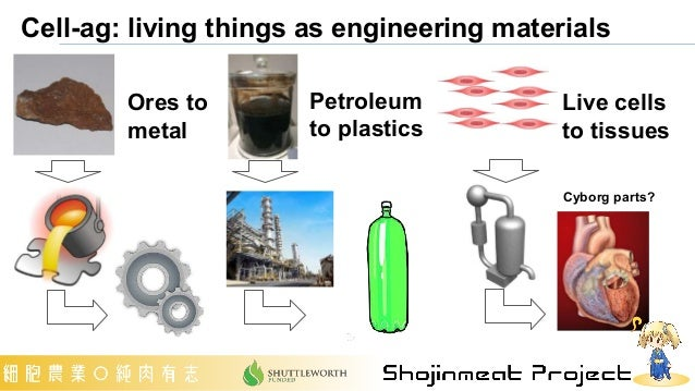Cell-ag: living things as engineering materials Ores to metal Petroleum to plastics Live cells to tissues Cyborg parts?