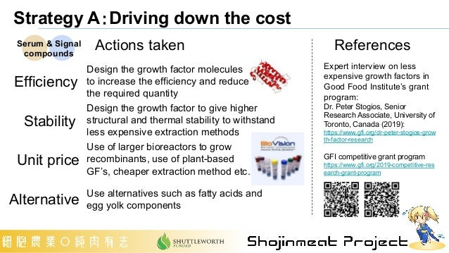 Strategy A:Driving down the cost Efficiency Stability Unit price Alternative Actions taken References Expert interview on ...