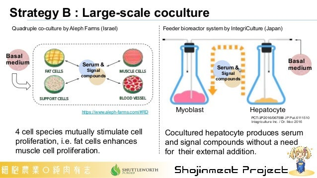 Cocultured hepatocyte produces serum and signal compounds without a need for their external addition. PCT/JP2016/067599 JP...