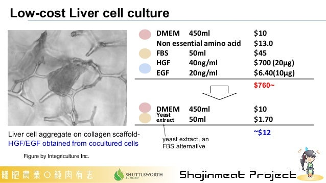 Low-cost Liver cell culture Figure by Integriculture Inc. DMEM  450ml  $10 Non essential amino acid  $13.0 FBS 50ml $45 HG...