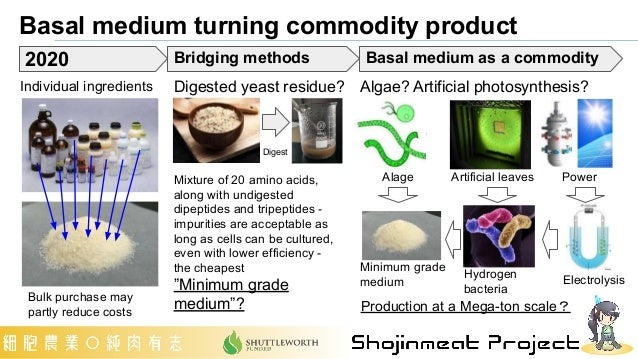 Basal medium turning commodity product Individual ingredients Digested yeast residue? Algae? Artificial photosynthesis? Bu...