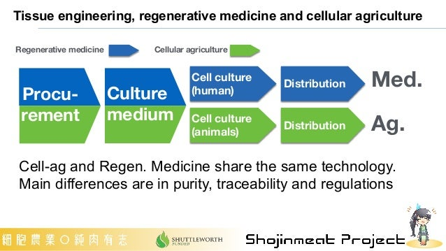 Tissue engineering, regenerative medicine and cellular agriculture Cell culture (human) Cell culture (animals) Distributio...