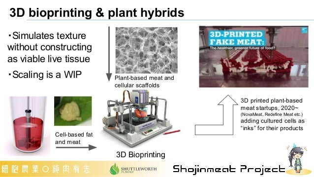 3D bioprinting & plant hybrids 3D Bioprinting Plant-based meat and cellular scaffolds Cell-based fat and meat ・Simulates t...