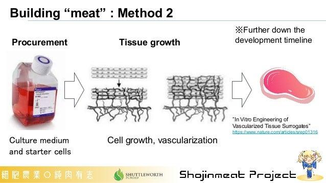 "Building ""meat"" : Method 2 ""In Vitro Engineering of Vascularized Tissue Surrogates"" https://www.nature.com/articles/srep01..."
