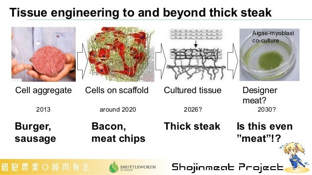 Tissue engineering to and beyond thick steak Cells on scaffold around 2020 Cell aggregate 2013 Cultured tissue 2026? Desig...