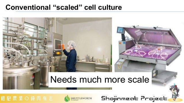 """Conventional """"scaled"""" cell culture Needs much more scale"""