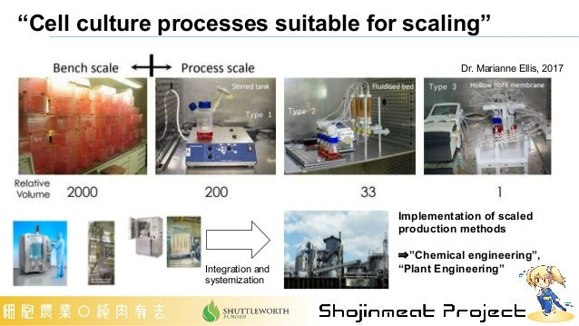 """Dr. Marianne Ellis, 2017 Implementation of scaled production methods ⇒""""Chemical engineering"""", """"Plant Engineering"""" Integrat..."""