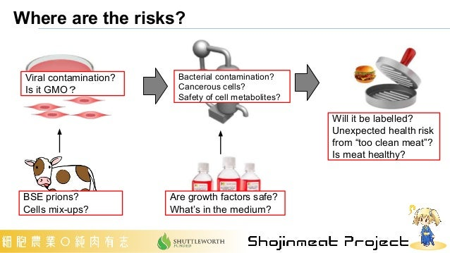 Where are the risks? BSE prions? Cells mix-ups? Viral contamination? Is it GMO? Are growth factors safe? What's in the med...
