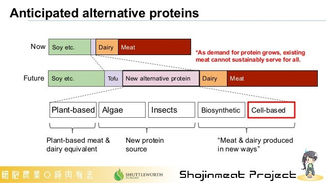 Anticipated alternative proteins *As demand for protein grows, existing meat cannot sustainably serve for all. Meat Soy et...