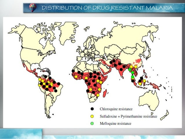 hiv vaccine resistance essay Two strains of hiv, hiv-1 and hiv-2, infect humans through the same routes of transmission, but hiv-1 is more easily conveyed and more widespread transmission of hiv occurs primarily through direct contact with bodily fluids — for example, blood, semen, vaginal fluid, breast milk, and preseminal fluid.