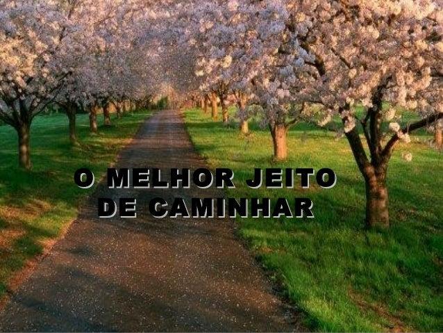 O MELHOR JEITOO MELHOR JEITO DE CAMINHARDE CAMINHAR