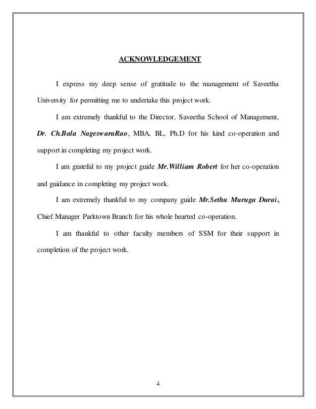 project risk management term paper