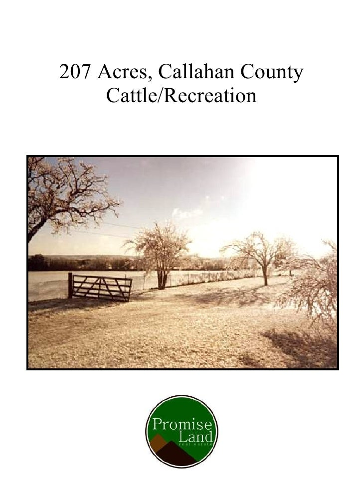 207 Acres, Callahan County Cattle/Recreation