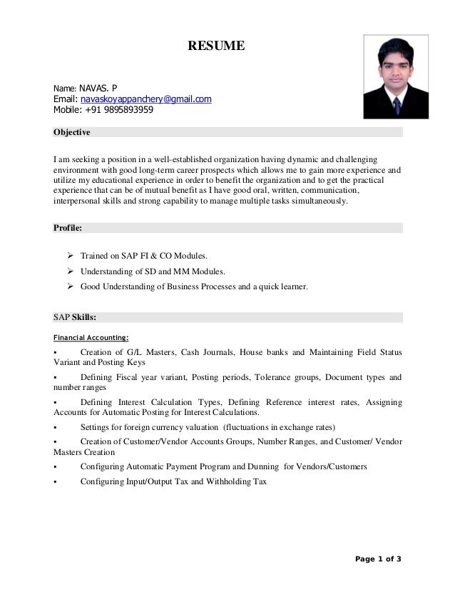 Sap CV PDF
