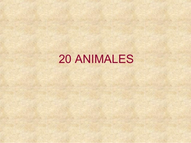 20 ANIMALES