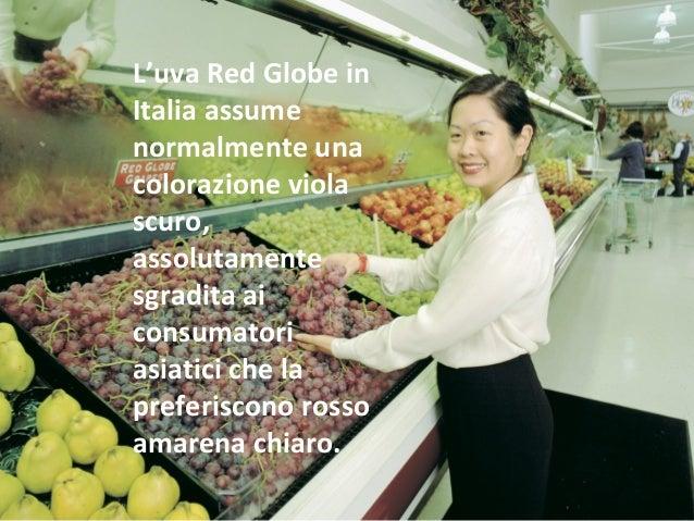 20 cose che non sapevi sull uva da tavola - Red globe uva da tavola ...