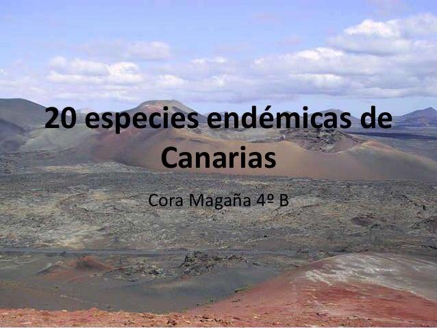 20 especies endémicas de Canarias Cora Magaña 4º B