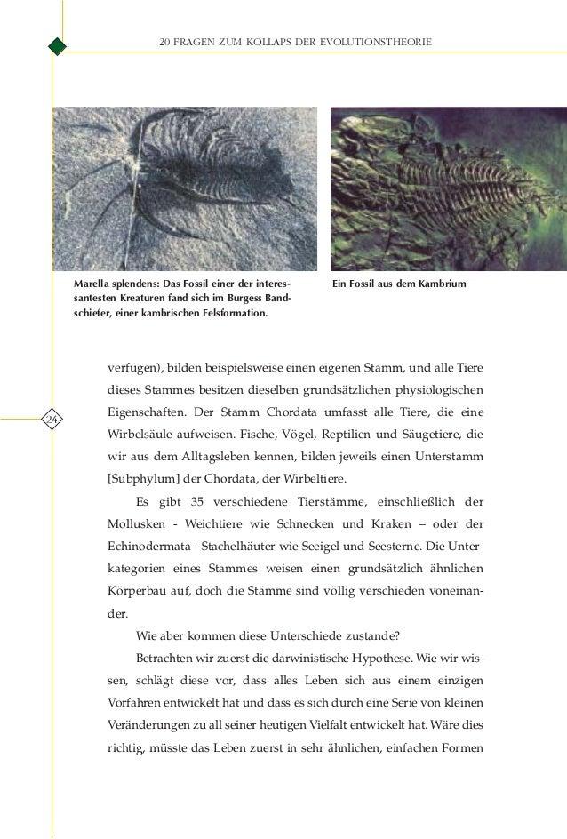 Ungewöhnlich Was Ist Tieranatomie Bilder - Anatomie Ideen - finotti.info