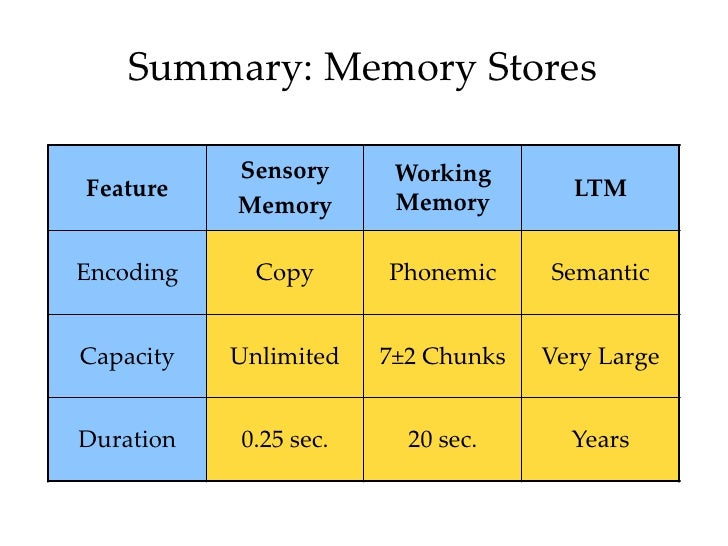 """Compare and contrast the three models of memory"" - WriteWork 