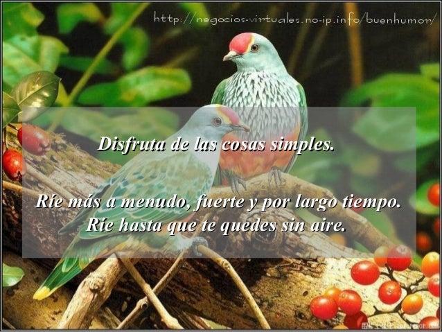 Disfruta de las cosas simples. Ríe más a menudo, fuerte y por largo tiempo. Ríe hasta que te quedes sin aire.