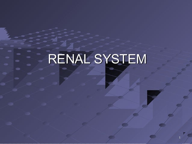 RENAL SYSTEM               1