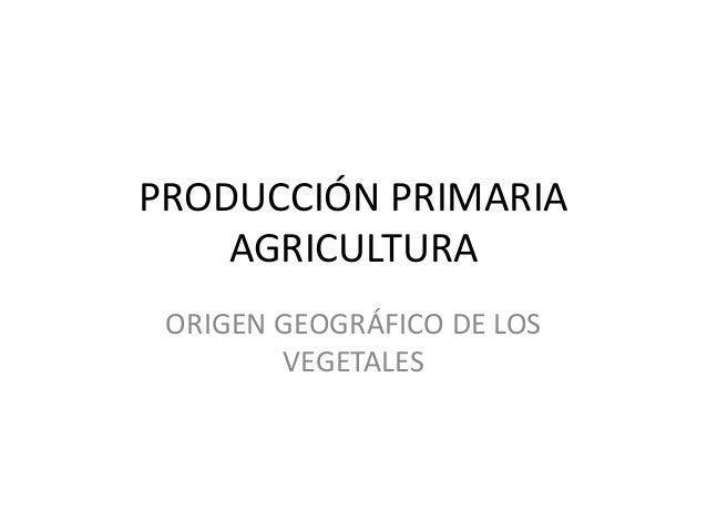 PRODUCCIÓN PRIMARIA AGRICULTURA ORIGEN GEOGRÁFICO DE LOS VEGETALES